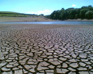 Lake in drought