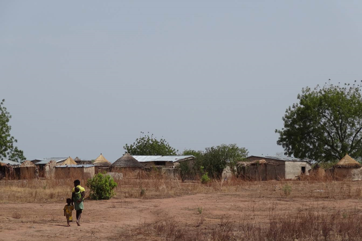 View of the Bisigu village during the dry season, West Mamprusi, Northern region, Ghana. in the West Mamprusi district of Northern Ghana, thatch and corrugated iron roofs dot the landscape.