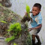 Young boy holding grass
