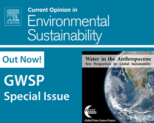 Special Issue image